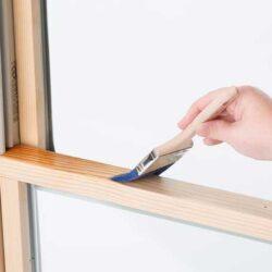 Gunakan Cara Ini Untuk Menghalau Rayap di Dalam Rumah
